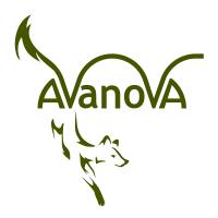 Avanova Art